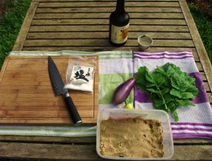 Eggplant, Daikon leaves and Banana Chili..